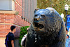 "09-27-12, SHK at UCLA : Free downloads.  Find the picture you want, put your cursor over the picture and choose the size you want to have.  If you are going to have it printed by your own photo lab, choose ""original"" (even thought it opens to a much larger picture than your computer can view at the time you are downloading).  Now, save the picture to your computer."